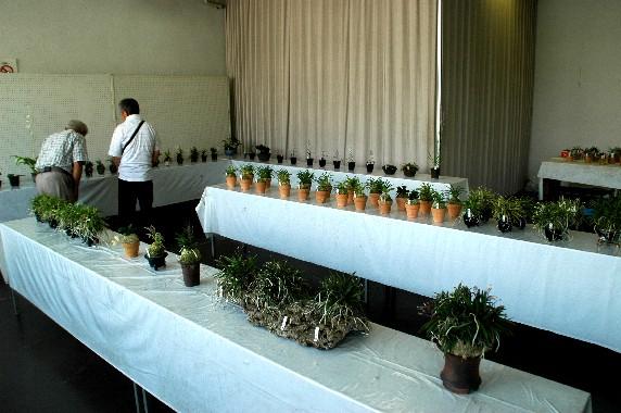 和歌山県植物公園緑花センター _b0093754_23555789.jpg