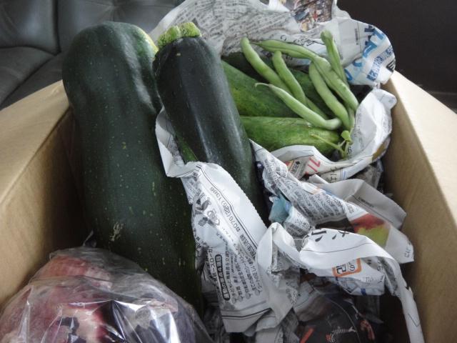 K.Mさまから、夏野菜をいただきました!_b0194462_23265295.jpg
