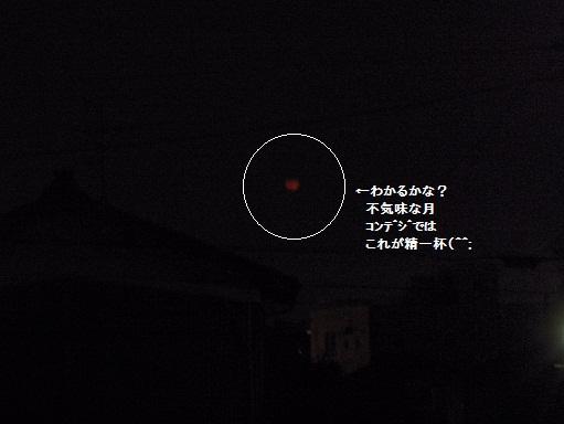 d0152182_6483738.jpg