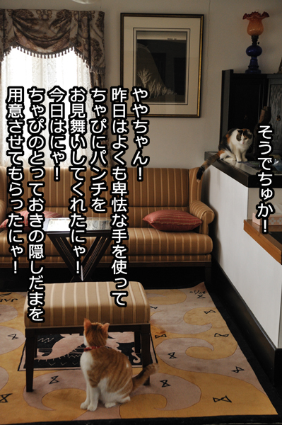 b0141397_1049987.jpg