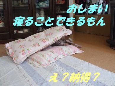 f0179203_16174465.jpg