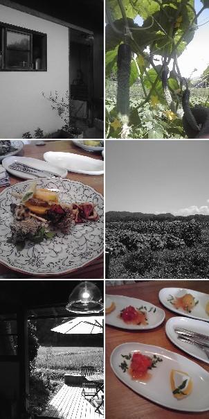 京丹後の農家さん・・・_c0130705_2105016.jpg