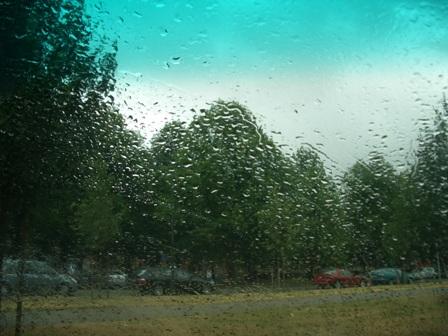 雨の日。_a0159707_21145577.jpg