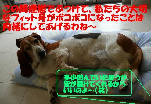 f0121712_1204768.jpg