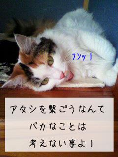 f0008935_14284058.jpg