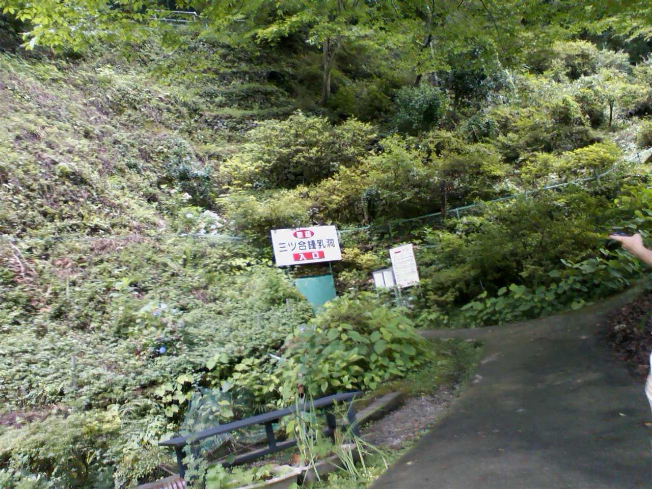 檜原村へ_c0206645_2150545.jpg