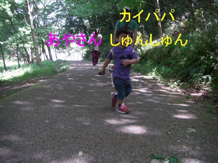 f0053952_12243511.jpg