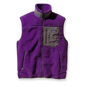 Patagonia Classic Retro-X Vest & Nano Puff Pullover_c0150963_6454829.jpg