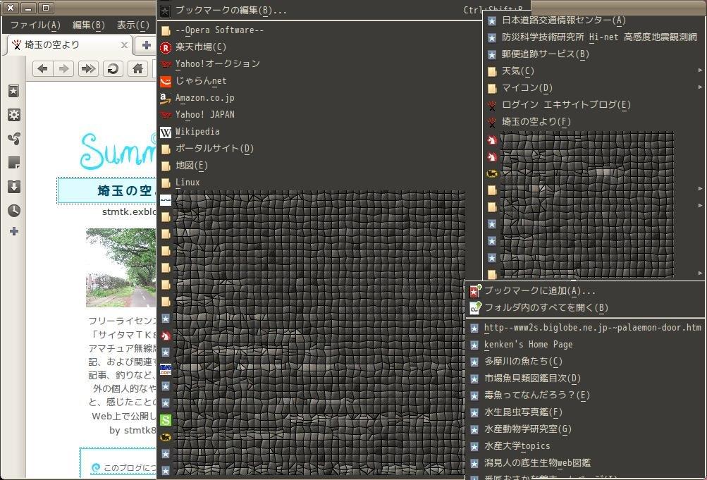(Ubuntuマシンに入れた)Operaブラウザ_a0074069_33423.jpg