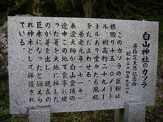 打波川支流 よろぐろ谷~桧谷_e0064783_22501935.jpg