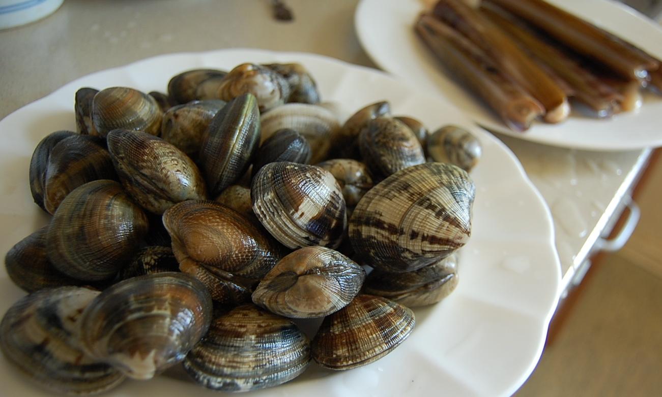 貝類、大好き!!!_c0180686_319575.jpg