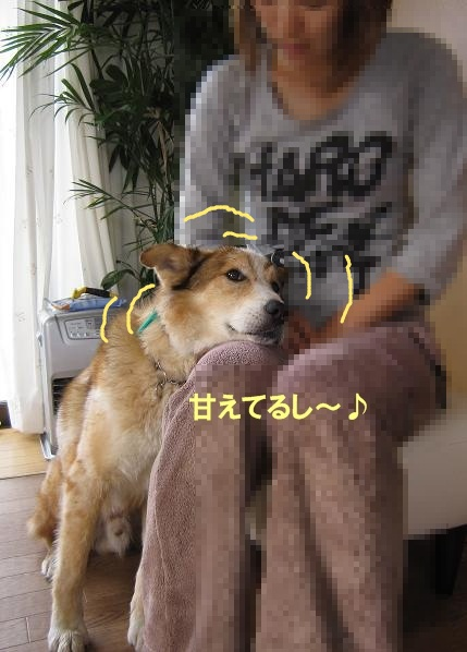 c0000189_13215397.jpg