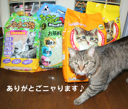 子猫の詰め合わせ&なおさん・いらっしゃい〜♪_d0071596_0205264.jpg