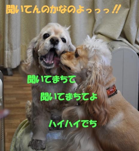 b0067012_103436.jpg
