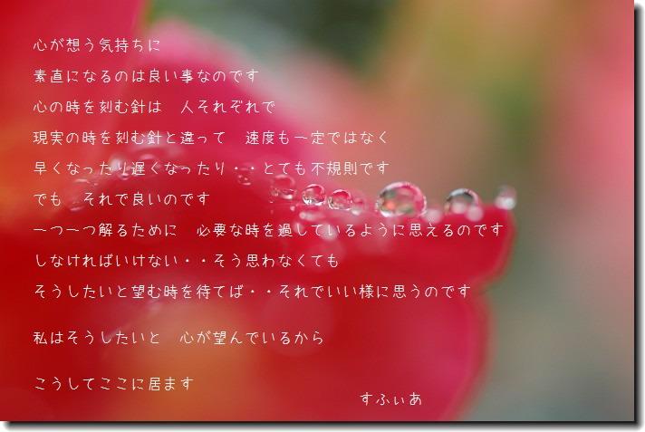 b0152416_1551475.jpg