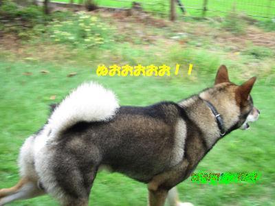 f0143123_20105951.jpg