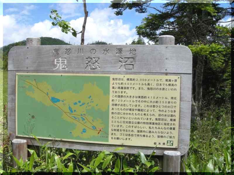 栃木の旅 7/25~28 ②_f0100825_230297.jpg
