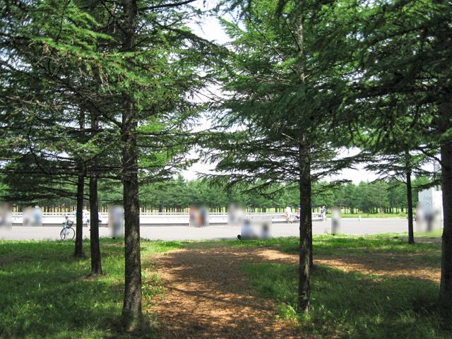 2010年7月 モエレ沼公園_a0016730_11315131.jpg