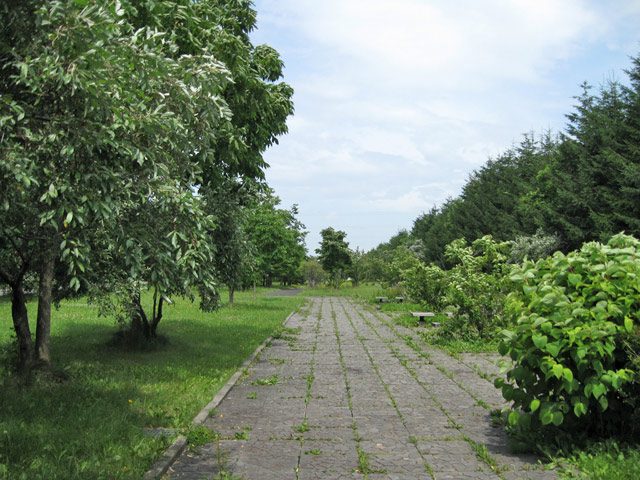2010年7月 モエレ沼公園_a0016730_11341724.jpg