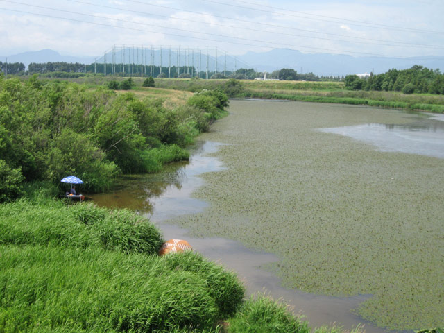 2010年7月 モエレ沼公園_a0016730_1134816.jpg