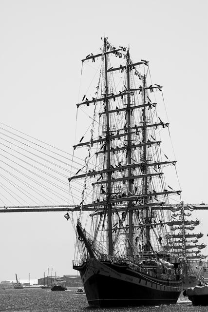 長崎帆船祭り 2010 Ⅱ_e0102255_20252046.jpg