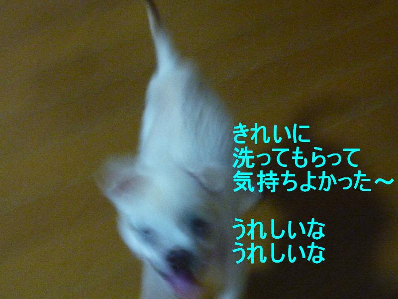 f0233763_21545170.jpg