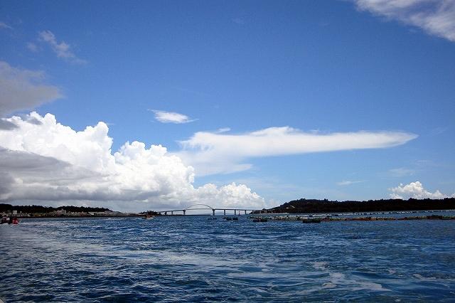 沖縄_d0073005_7504962.jpg