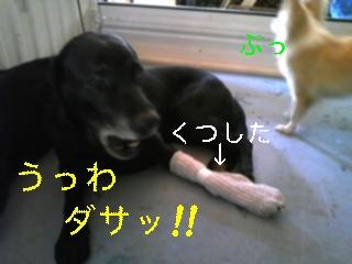 f0148927_18433764.jpg