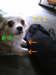 f0148927_190458.jpg