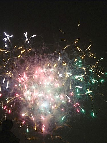 第35回 隅田川花火大会@ホームパーティ。..。.゚。*・。♡ _a0053662_18342919.jpg
