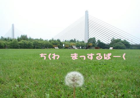 f0195891_20213957.jpg