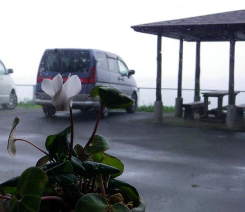 久しぶりの西海岸ドライブは、お殿水まで♪_a0136293_14225335.jpg
