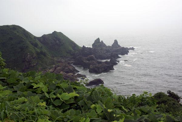 久しぶりの西海岸ドライブは、お殿水まで♪_a0136293_1426499.jpg