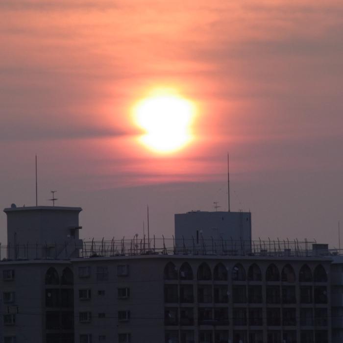 夏にご用心 by GRD3 & CX2_c0049299_10185144.jpg