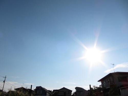 真夏ですな_f0141609_1622746.jpg