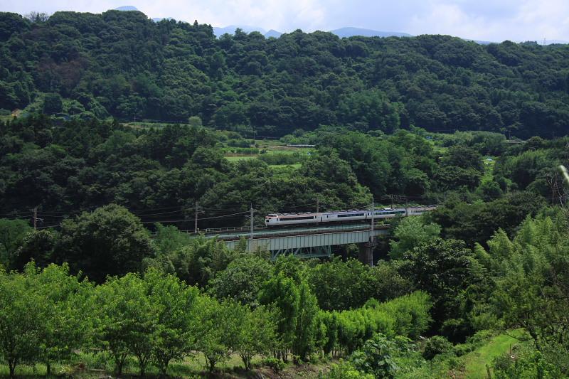 2010年 真夏の上越線(4) -変な電車とスイカ泥棒-_b0190710_23173043.jpg