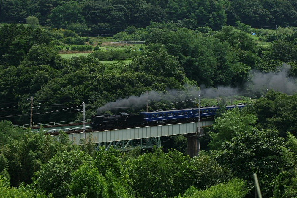 2010年 真夏の上越線(4) -変な電車とスイカ泥棒-_b0190710_23182996.jpg