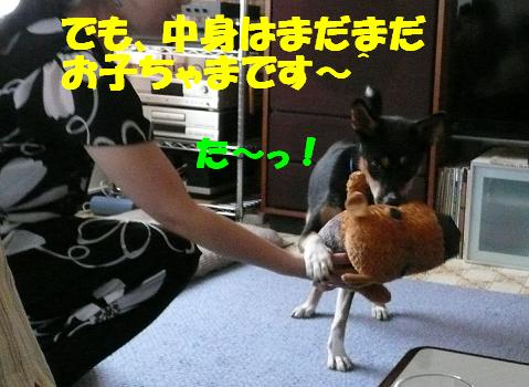 f0121712_1745525.jpg