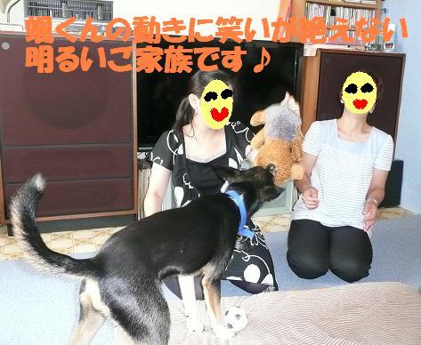 f0121712_1751731.jpg