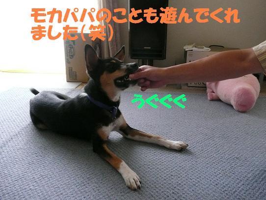 f0121712_1755855.jpg