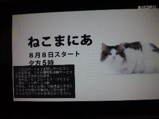 f0029717_17213437.jpg