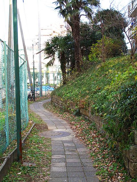 古川(渋谷川)白金三光町支流・再訪_c0163001_23321646.jpg
