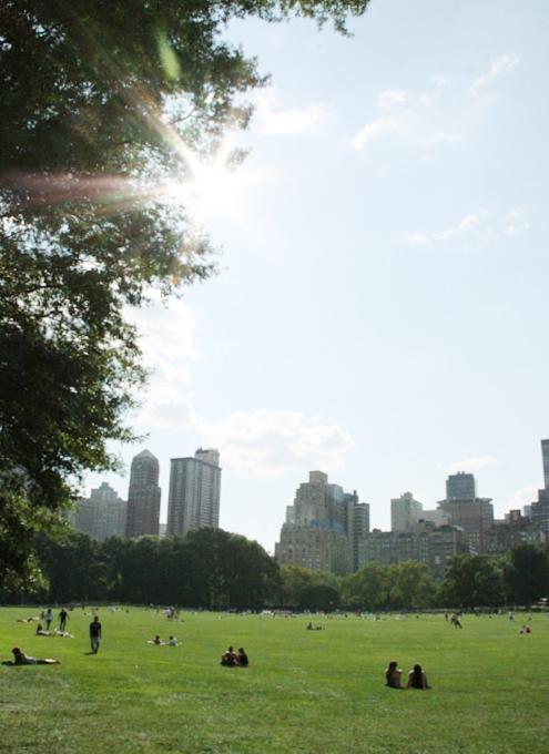 夏のセントラルパーク風景_b0007805_029431.jpg