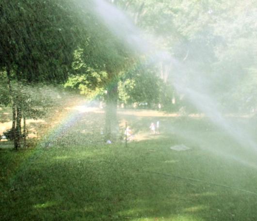 夏のセントラルパーク風景_b0007805_030572.jpg