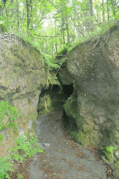 北海道の旅1「支笏湖湖畔の苔の洞門」_a0148206_16365112.jpg
