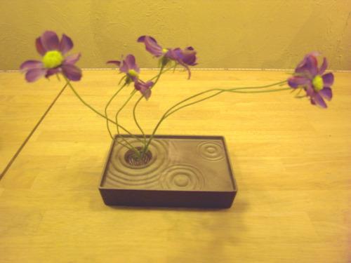 一本の花でもあなただけの世界が生まれます。_d0182409_16154257.jpg