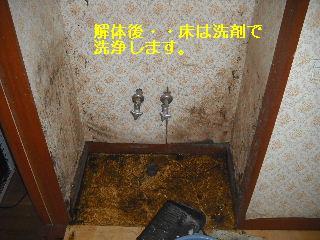 f0031037_18304091.jpg