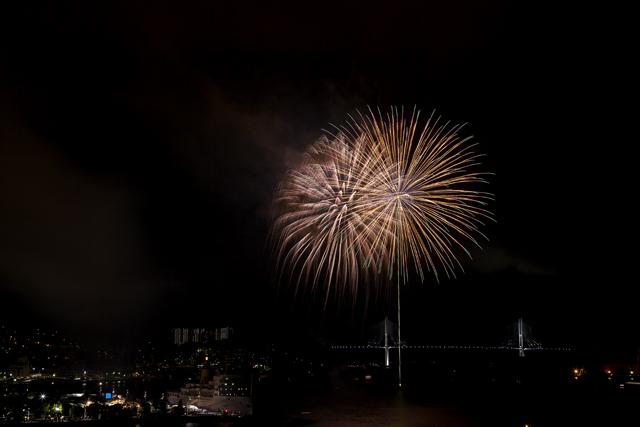 鶴の港の夜を照らす花_e0102255_2141893.jpg