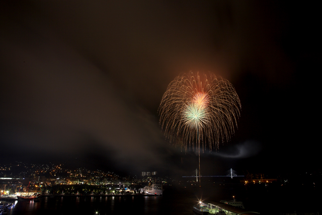 鶴の港の夜を照らす花_e0102255_21433.jpg