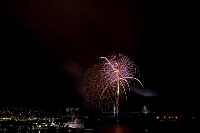 鶴の港の夜を照らす花_e0102255_2144348.jpg